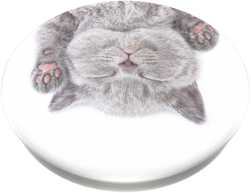 Popsockets - Cat Nap